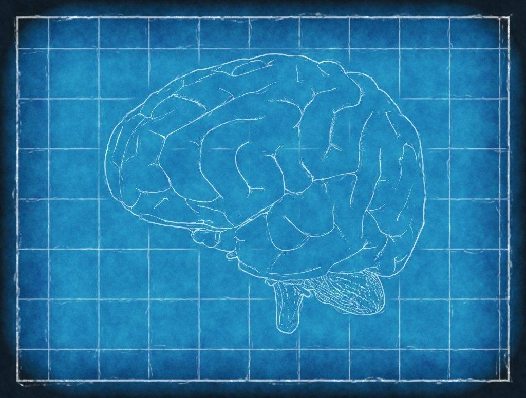 La epilepsia, secuela de negligencia médica